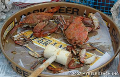 Blue Crabs at the Little River Blue Crab Festival